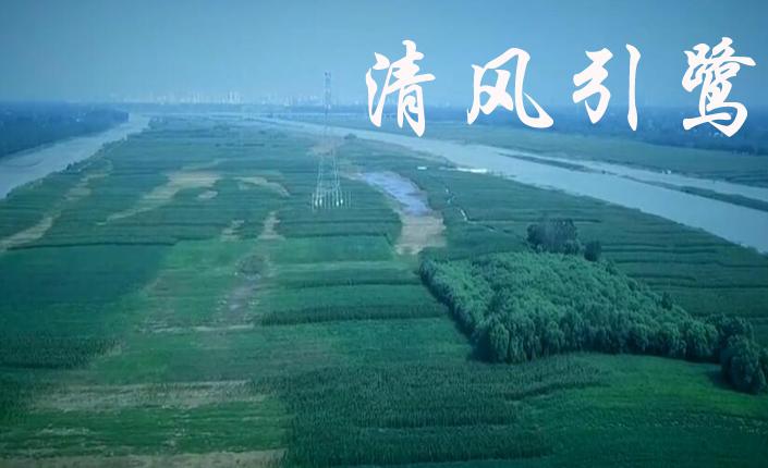 [微电影展播]《清风引鹭》江苏省沭阳县检察院提供